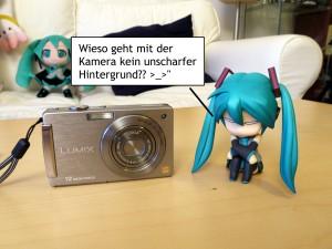 Miku und Panasonic DMC-FX550
