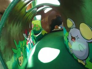 PokemonTrain09